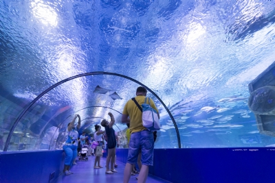 Adventure Tours - ANTALYA AQUARIUM